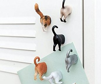 cat butt fridge magnet
